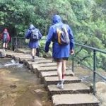 Blue Mountains Walk (Fully booked as of 03/04/2017)